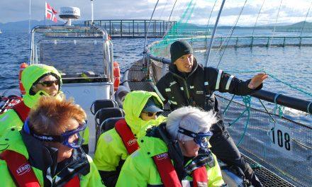 Miljøfond mot marin forsøpling