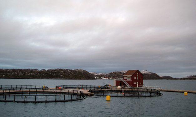 Innspillsmøte om havbruksnæringen i Bergen