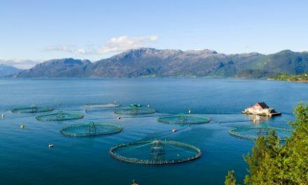 Se debatten om havbruksfondet på Stortinget 8. juni