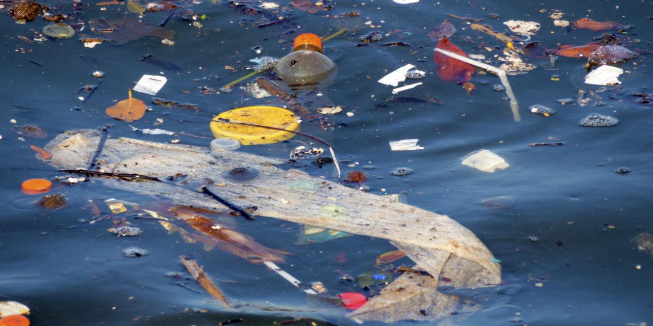 Nå trengs mobilisering og krafttak mot den marine forsøplingen!