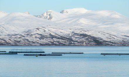 Våre fjorder og vår kyst er viktige for FNs bærekraftsmål