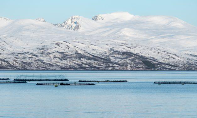 Merdene må lukkes, mener Norges Miljøvernforbund