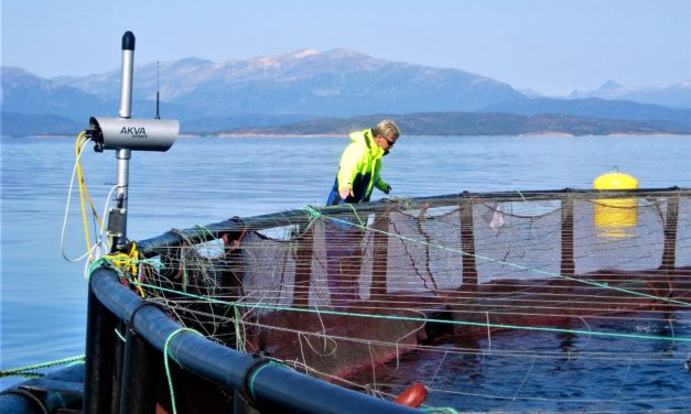 Fjord- og kystkommuner må ikke bli «gamlehjem i naturskjønne omgivelser»