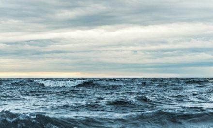 Staten må gjøre mer for rent hav
